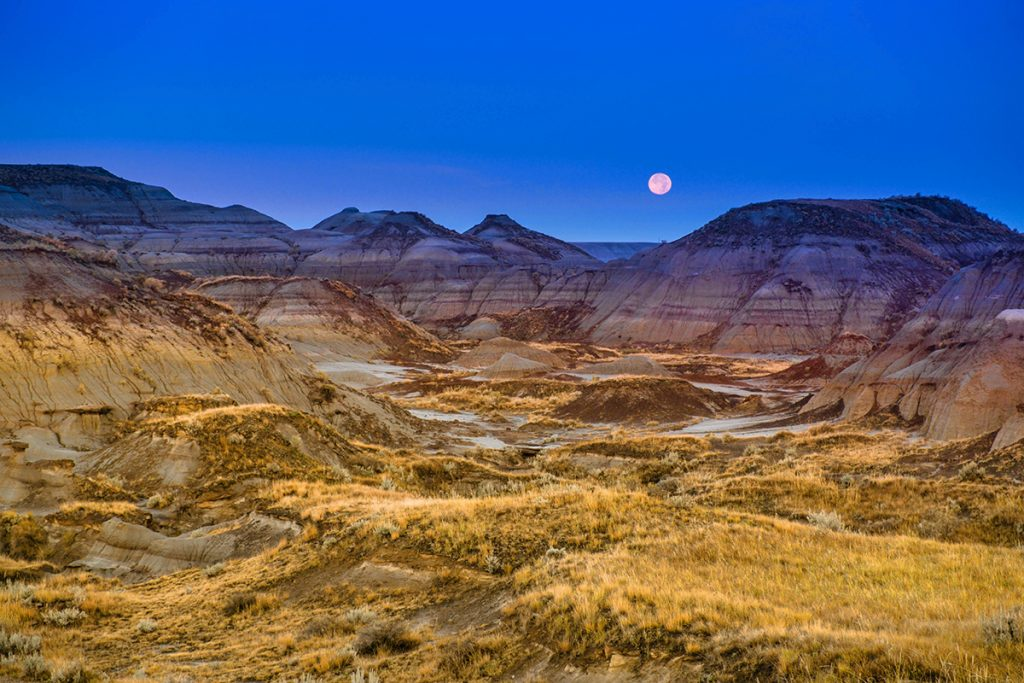 Good Morning Dinosaur Provincial Park