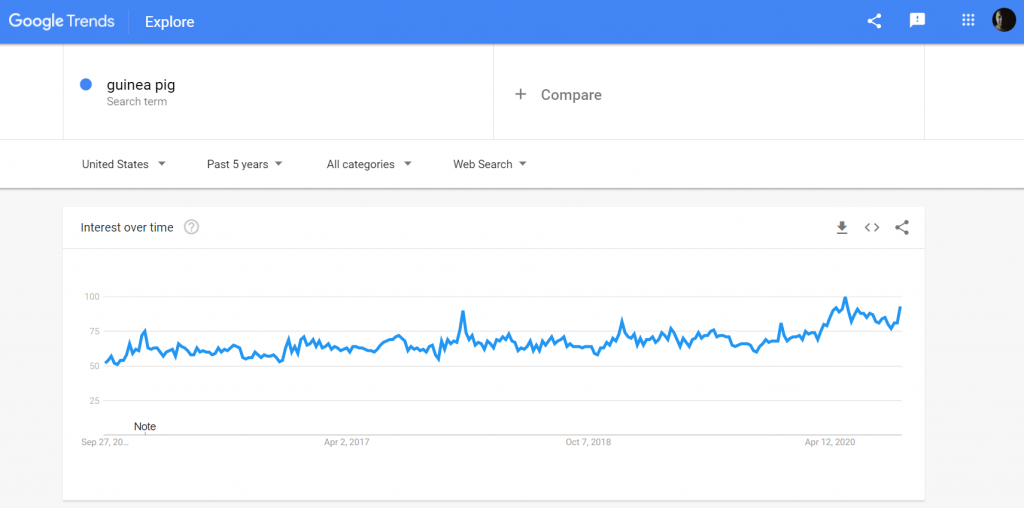 5 year Google Trends chart of Guinea Pigs